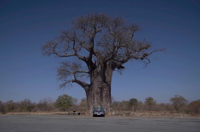 Zimbabwe, a pleasantsurprise.