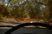 The Road to Kapishya.