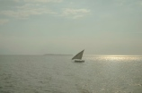 A Dhow on the way out of Zanzibar.