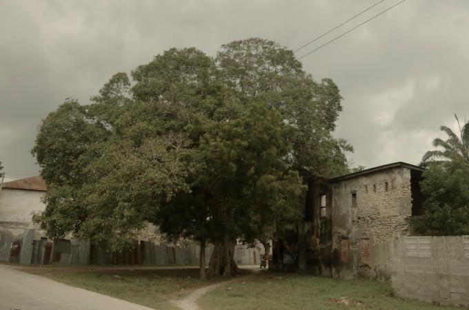 Street scene in Bagamoyo.