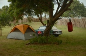 Camp Dargle to Dargle at Firefly in Bagamoyo.