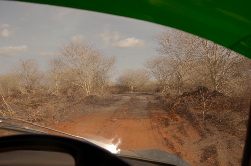 The red dust road heading towards Moyale.