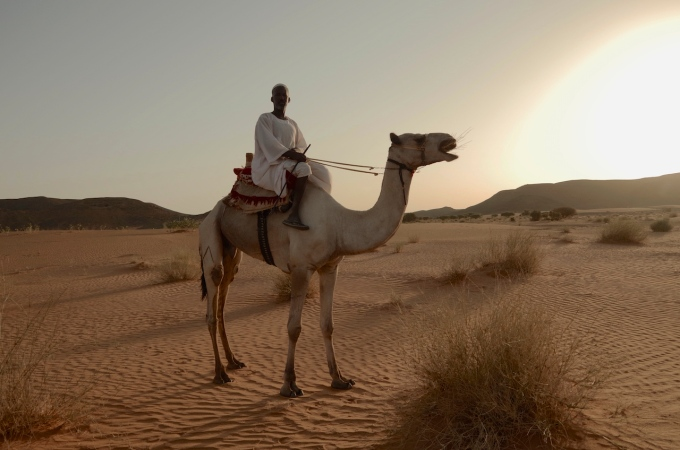 Sudanese camel rider.